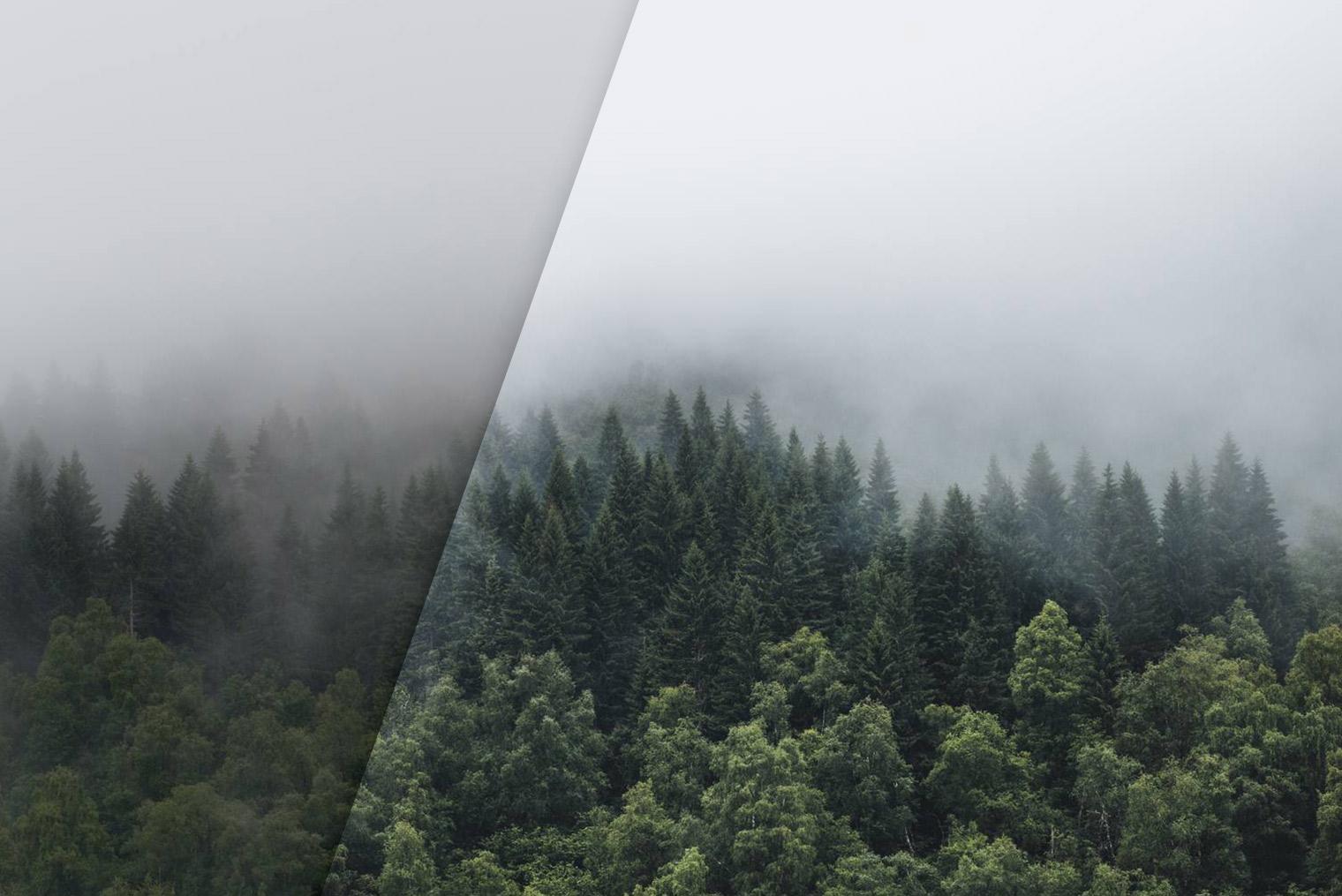 nls-free-moody-landscape-lightroom-presets-before-after-07