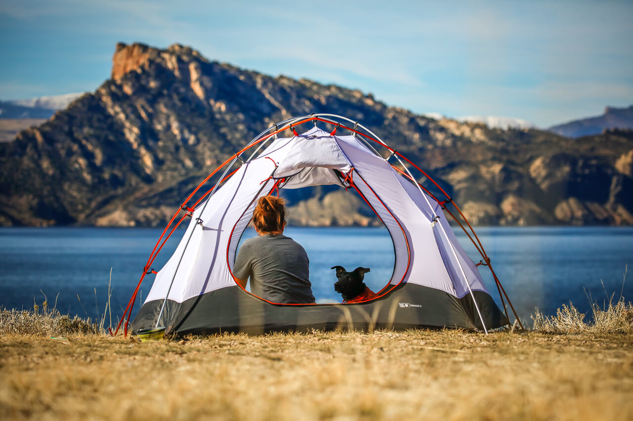 Wild-camping-with-a-dog